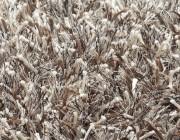 Comford Brinker Carpets kleed karpet