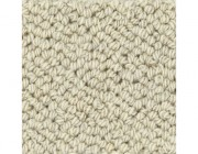 Cunera karpet