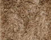 De Munk carpets paestum