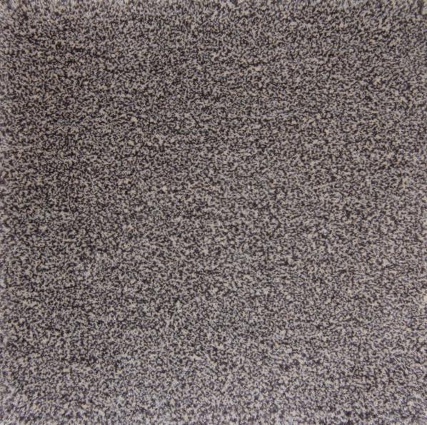 De Munk tares karpet